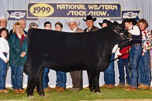 Greens Princess 7418 - NWSS 1999