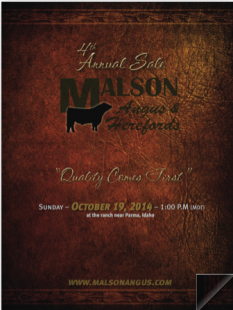 Malson Angus Female Sale 2014